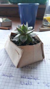 DIY Pflanztopf 🌱